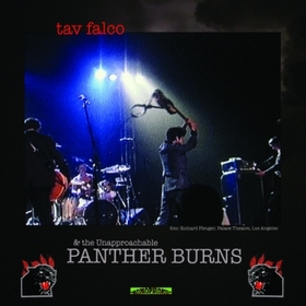 TAV FALCO PANTHER BURNS - Administrator Blues