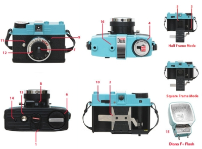 Diana Mini Diagram